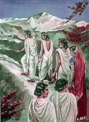 Draupadi - With Pandavas, To Attain Moksha